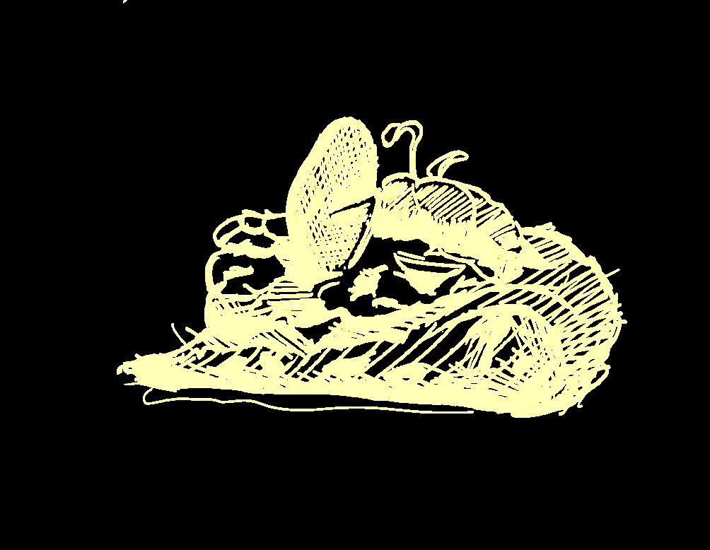 icon-pizzagourmet-mater